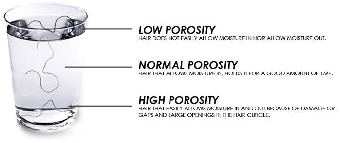 hair-porosity-test